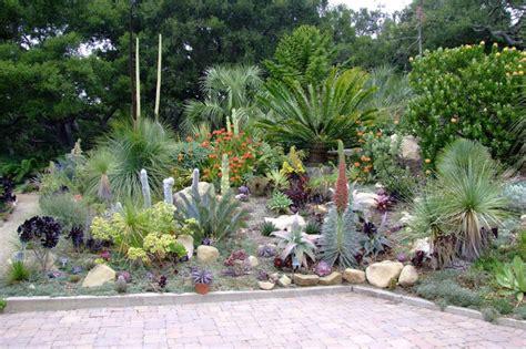 succulent landscapes succulent gardens ferrebeekeeper