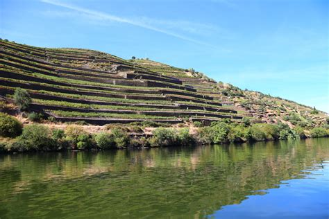 Boat Trip Douro by Wine Tour With Boat Trip In Douro River Douro Wine