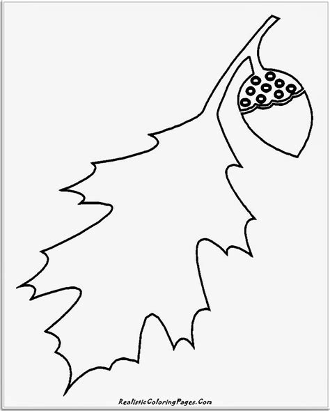 14 simple nature coloring pages realistic coloring pages 542 | simple leaf coloring pages for kindergarten kids