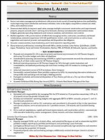 it professional resume format proffesional resume resume cv