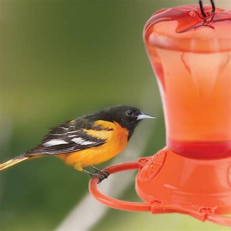 duncraft com oriole nectar feeder