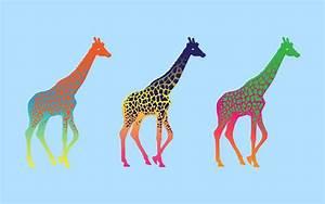 Pop Art Desktop Wallpaper (53+ images)