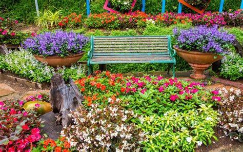coltivare fiori coltivare giardinaggio coltivazioni