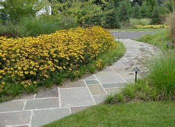 local   landscaping contractors design