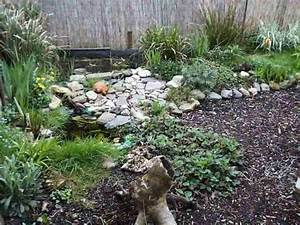 Kleine Gartenteiche Beispiele : gartenteich schildkroeten ~ Whattoseeinmadrid.com Haus und Dekorationen