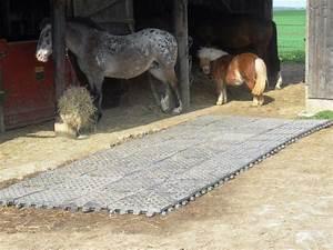 Forum Faire Construire : stabilisation de sol pour un paddock 3 forum cheval chevaux quith rapie pinterest ~ Melissatoandfro.com Idées de Décoration