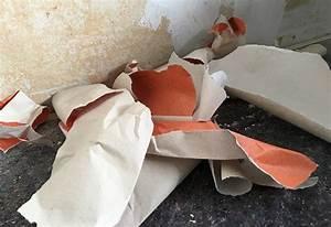 Alte Tapeten Ablösen : tapetenreste alte tapeten wie wo entsorgen ~ Watch28wear.com Haus und Dekorationen