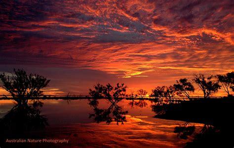 home australiannaturephotographycomau
