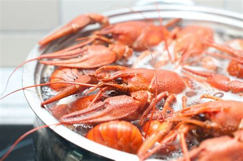 how to boil lobster how to boil lobsters how to cook lobsters how to eat lobsters
