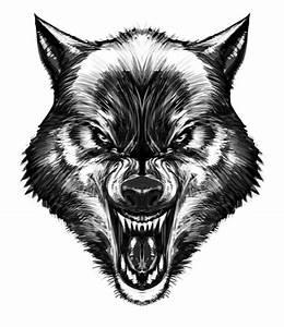 Wolf by biz02.deviantart.com on @deviantART | Dope ...