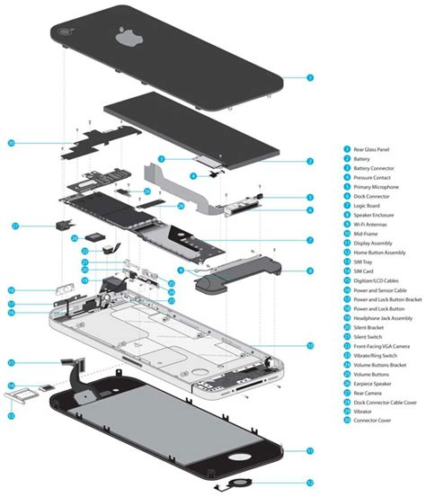 iphone illustration  ifixitcom dfi graphics