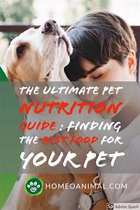 The Ultimate Pet Nutrition Guide   Finding The Best Food