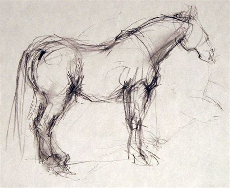 gesture drawing horses google search horse drawings