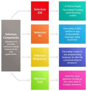 Life Cycle of a Test Using Selenium
