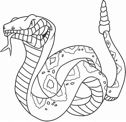 Snake Coloring Viper Pages Printable Getcolorings