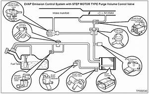 How To  Testing And Eliminating P1447 Evap Control System Purge Flow Monitoring
