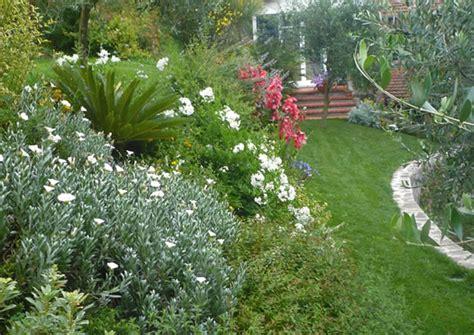 progetto giardino mediterraneo i nostri progetti progettare giardini