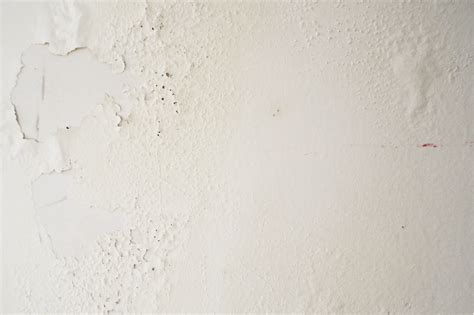 rustic white texture background textures  creative