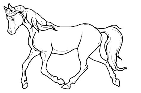 Horse Pictures To Trace