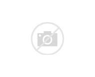 Samoyed Puppies with Blue Eyes