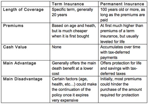 What Type Of Insurance Should I Buy?