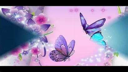 Butterfly Wallpapers Desktop Backgrounds 3d Wallpapersafari Picserio