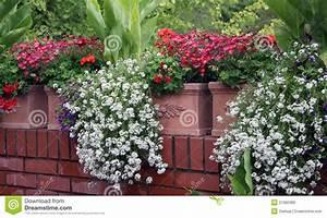 Bac A Fleur Balcon : fleurs de balcon image stock image du t c ramique 21082389 ~ Teatrodelosmanantiales.com Idées de Décoration