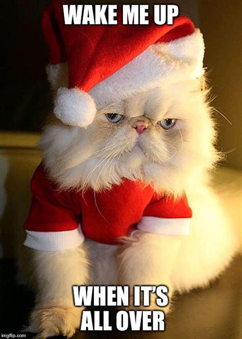 Santa Grumpy Cat - Imgflip