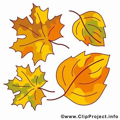 Cliparts Gratis Clipart Automne Lehdet Feuilles Herbst