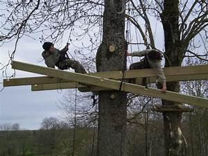 Cabane Dans Les Arbres Construction : construction de la cabane dans l 39 arbre la ferme des bassets ~ Mglfilm.com Idées de Décoration