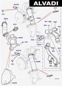 Land Rover Europe Thermostat  Housing  U0026 Related Parts  5 0l