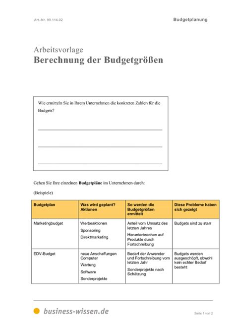 budgetplanung  business wissende