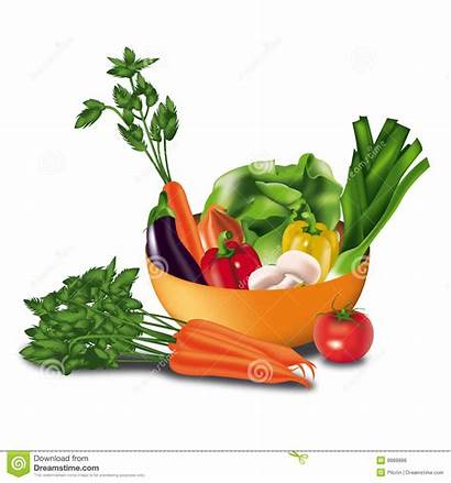 Vegetables Clipart Raw Bowl Vector Illustration Single