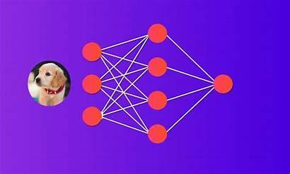 Neural Network Python Deep Build Scratch Own