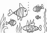 Fish Coloring Printable Children Activity Imagixs Via sketch template