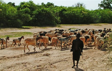 Bureau De Coordination Des Affaires Humanitaires - irin près de 25 millions de personnes en situation d