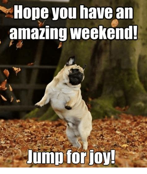 Weekend Memes - hope you have an amazing weekend jump for joy meme on sizzle