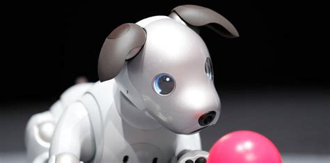 Sony's Robot Dog Draws Crowds At Ces 2018