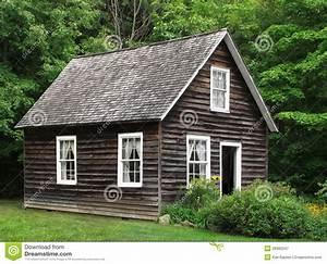 Petite Maison En Bois Rustique Dans Les Arbres