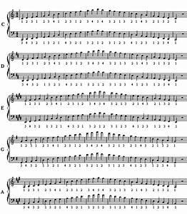 Proper fingering for piano scales Major keys C G D A E ...