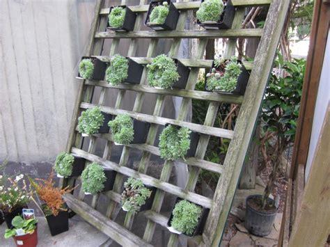 How To Do A Vertical Garden by Vertical Gardens Diy