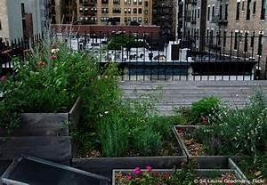 urban gardening fur ihr zuhause garten gestalten fur With französischer balkon mit garten dachterrasse