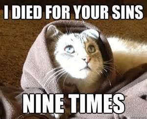 Meme Kitty - cat jesus 171 why evolution is true