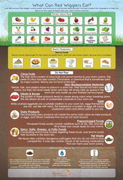 worms eat worm wiggler wigglers infographic composting farm poster refrigerator magnet compost bin feeding vermicomposting squirm firm partners sku