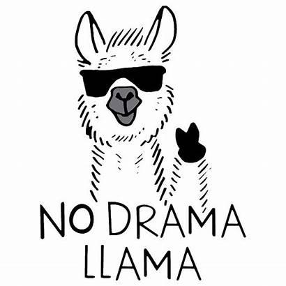 Llama Face Drama Meme Funny Redbubble Drawing