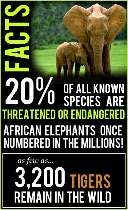 wildlife conservation facts     species