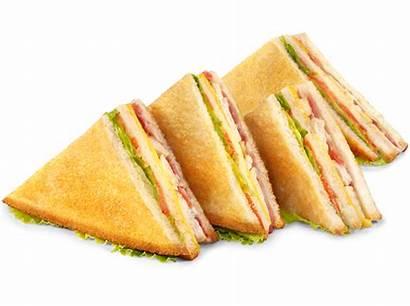 Sandwich Bocadillos Queso Lonchas Sandwiches Comida Pollo