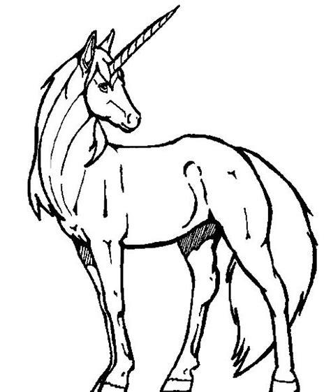 unicorno da stare e colorare per bambini unicorno bel disegno da stare e colorare per bambini