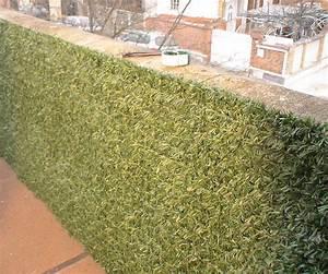 Haie Naturelle Brise Vue : brise vue bois jardin castorama ~ Premium-room.com Idées de Décoration