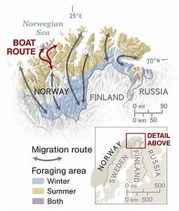 Migration Routes - National Geographic Society